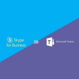 fin skype